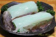 Spear Squid