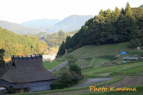 秋の棚田 TANADA Autmun