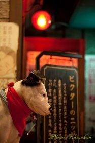 Victor dog Osaka-nakatu Skytower