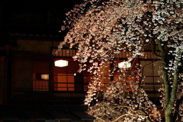"""祇園 """"Gion"""" Kyoto Japan"""