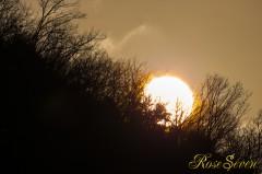 morning 冬の日の出