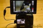 Nexus7 (2013) + 1D X サブモニター化