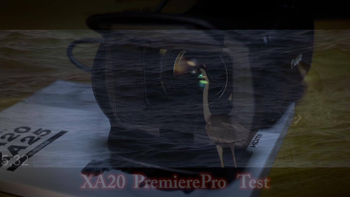XA20 Bird SlowTest