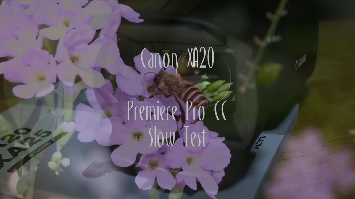 Canon XA20 PremierePro Slow Test II
