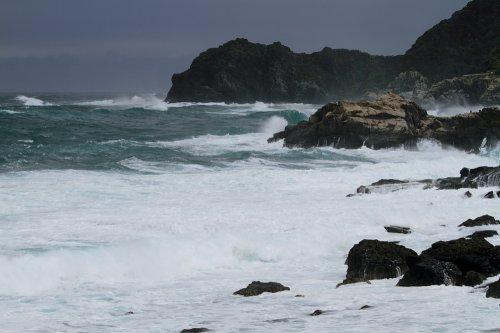 波を被ちゃって 坊主