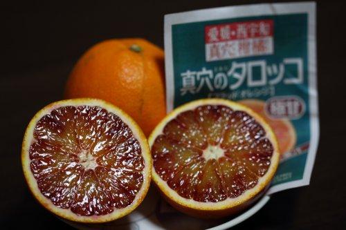 国産 ブラッドオレンジ